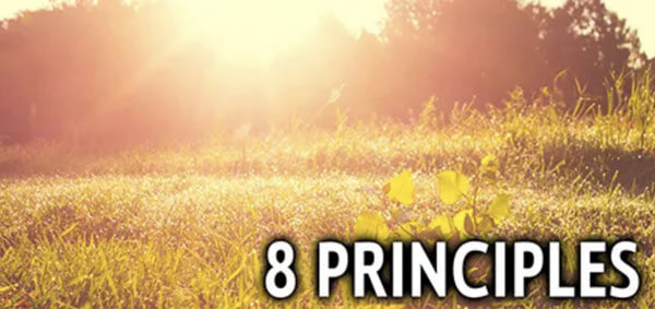 8 Principles - Celebrate Recovery